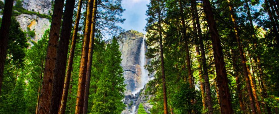 National Park Free Days 2019